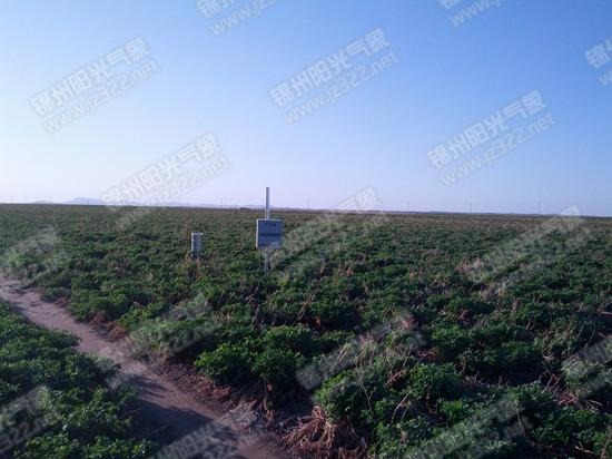 C 2SK土壤节水灌溉解决方案